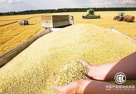 我国由粮食生产大国迈向粮食产业强国